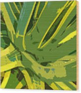 Cactus Work Number 2 Wood Print