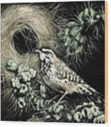 Cactus Wren Wood Print