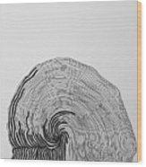 Cadence Wood Print
