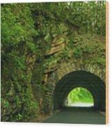 Cades Cove Tunnel Wood Print