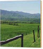 Cades Cove View Wood Print