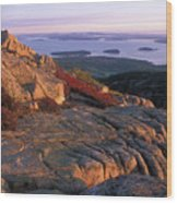 Cadillac Mountain At Sunrise Wood Print