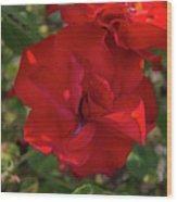 Caecilla's Rose Garden Wood Print