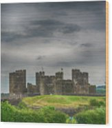 Caerphilly Castle East View 3 Wood Print