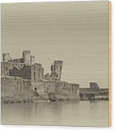 Caerphilly Castle Panorama Antique Wood Print