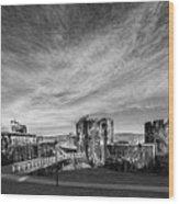 Caerphilly Castle Panorama Mono Wood Print