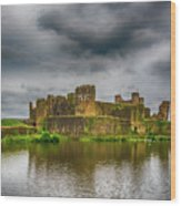 Caerphilly Castle South East View 1 Wood Print