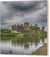 Caerphilly Castle South East View 2 Wood Print
