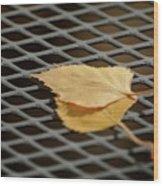 Caged Leaf Wood Print