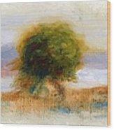 Cagnes Landscape 1910 Wood Print