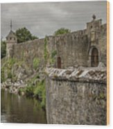 Cahir Castle 1384 Wood Print