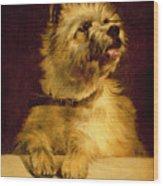 Cairn Terrier   Wood Print by George Earl