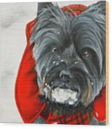Cairn Terrier In The Snow Wood Print