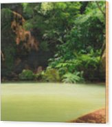 Caldeira Velha Thermal Pool Wood Print