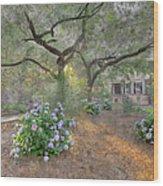 Calhoun Square  Wood Print