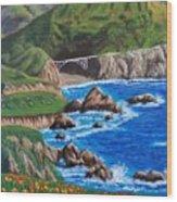 California Coastline Wood Print