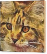 Calico Cat Wood Print