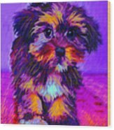 Calico Dog Wood Print by Jane Schnetlage