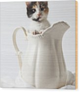 Calico Kitten In White Pitcher Wood Print