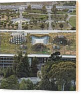 California Academy Of Sciences Living Roof In San Francisco Wood Print