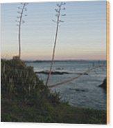 California At Twilight Wood Print
