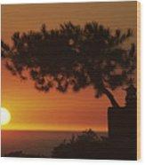 California, Big Sur Coast Wood Print