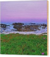 California Coast Wood Print by Jen White