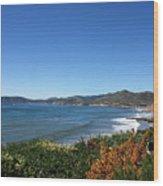 California Coast Line - Pismo Beach Wood Print