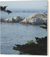 California Coast Vii Wood Print
