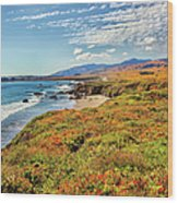 California Coast Wildflowers On Cliffs Wood Print