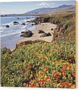 California Coast Wildflowers Vertical Format Wood Print