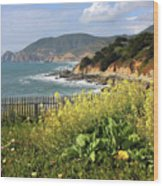 California Coast With Wildflowers And Fence Wood Print
