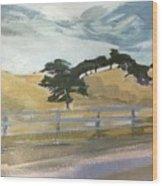 California East Bay Oaks Wood Print