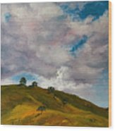 California Hills Wood Print