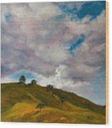 California Hills Wood Print