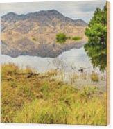 California Kaweah Lake Scene Wood Print