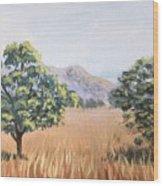 California Landscape. Fall Wood Print