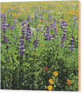 California Meadow Wood Print