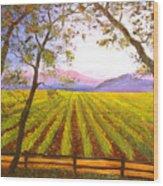 California Napa Valley Vineyard Wood Print