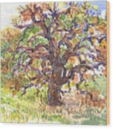 California Oak In Winter Wood Print