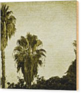 California Palms Wood Print