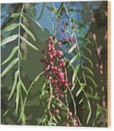 California Pepper Tree Leaves Berries Abstract Wood Print