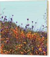 California Poppies And Wildflowers Wood Print