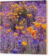 California Poppy And Lupin Wood Print