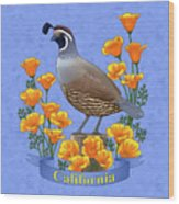California Quail And Golden Poppies Wood Print by Crista Forest