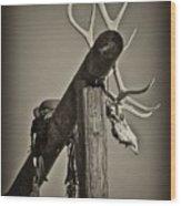 California Ranch Gate   Wood Print by Gus McCrea