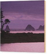 California, Sonoma Coast Wood Print