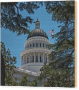 California State Capital Wood Print