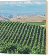 California Vineyards 2 Wood Print