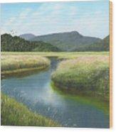 California Wetlands 2 Wood Print